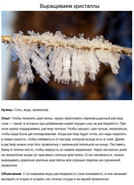 1421993937_nauchniy_experement_04